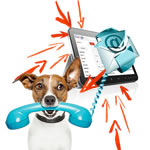 Receive a free Voice message with Fax to Email